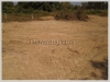 ID: 2341 - Nice Vacant land in Lao community not far from Huakua Market