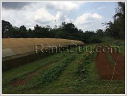 ID: 3969 - Nice Land of Argiculture for sale in Pakxong district
