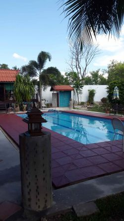 ID: 4066 - The Lao style house with swimming pool for rent in Sisattanak district