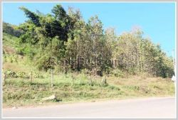 ID: 3446 - Nice land for sale in Luangprabang Provice, 7Km from the city.