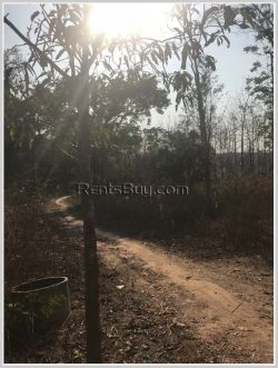 ID: 3997 - Land for Agriculture for sale in Naxaythong district