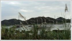 ID: 209 - Nice vacant land near Mekong River for sale Sangthong District, 30km from Vientiane
