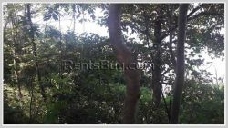 ID: 621 - Beautiful land close to Ngeum riverside for sale in Tiger Beer Factory area