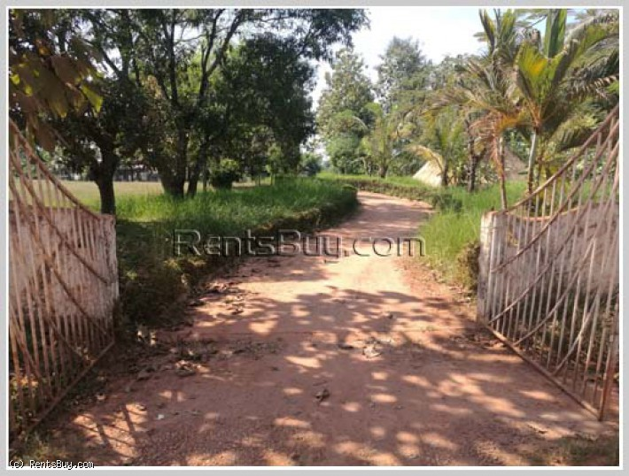 ID: 4273 - Vacant Shady land with pretty house in Ban Oudomphon for sale