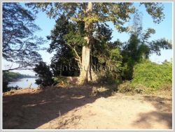 ID: 3834 - Agriculture land for sale near Numngum River in Pakngum District