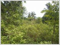 ID: 1528 - Vacant land for sale at Sangveuy Village