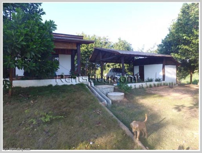 ID: 3494 - Beautiful island with house for sale in Vangvieng District.