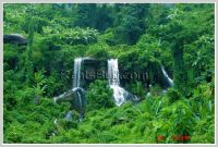 ID: 2971 - Agriculture land by waterfalls for sale with beautiful waterfall & mountain view